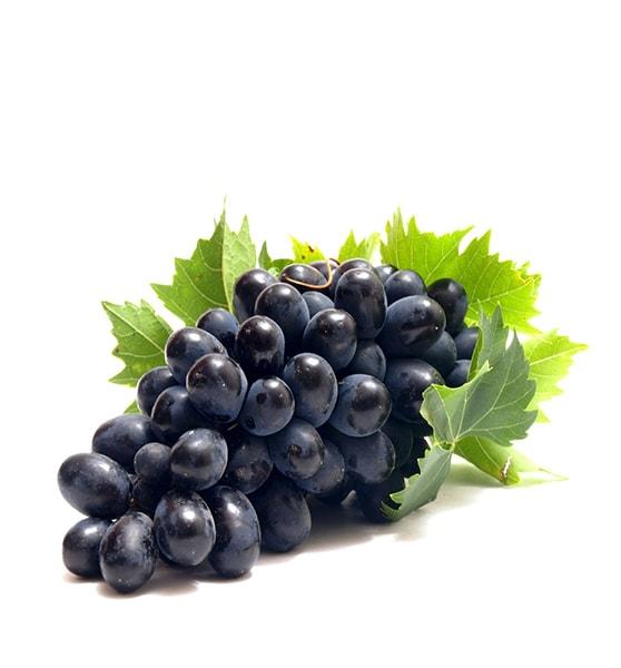 American Grape